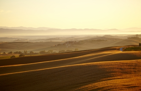 wine road: Landscape in Tuscany at sunset in summer