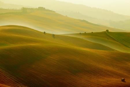 tuscany landscape: Scenic view of Tuscany landscape, Italy    Nature background Stock Photo