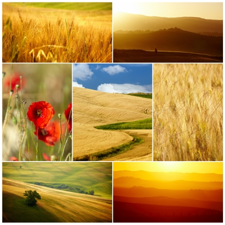 Tuscany collage photo