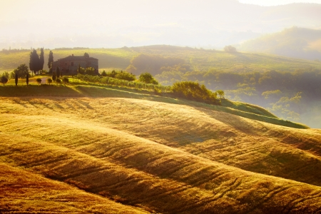 tuscany: Landscape in Tuscany at sunset in summer
