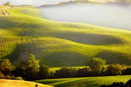 lonely road: View of typical Tuscany landscape