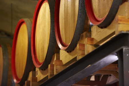 barrels in a wine cellar  photo