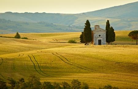 Landscape in Tuscany at sunset in summer Banco de Imagens - 14719887