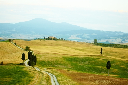 val: Typical landscape in Val dOrcia ( Tuscany, Italy) at summer. Road .