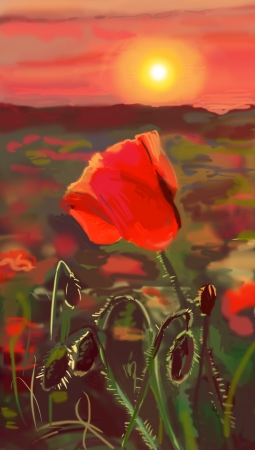 opium: Field of poppies - illustration