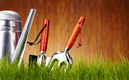 garden tool: Autumn garden tools background