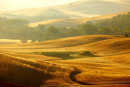 autumn scene: View of typical Tuscany landscape