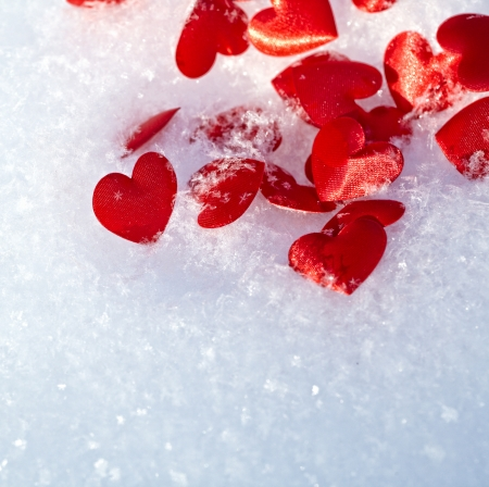 Red hearts on snow  photo