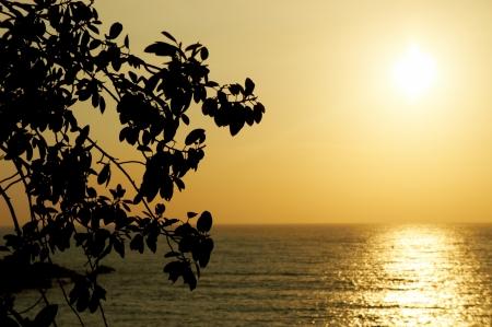 fortunate: Sunset on the Goa beach, India  Stock Photo