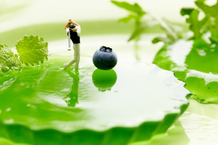 Miniature Figures playing golf on fruits photo