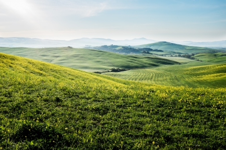Early morning on countryside in Tuscany  photo