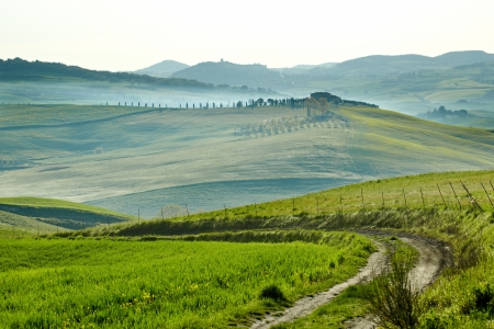 orcia: Countryside, San Quirico ´Orcia , Tuscany, Italy  Stock Photo