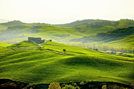 quirico: Countryside, San Quirico ´Orcia , Tuscany, Italy  Stock Photo