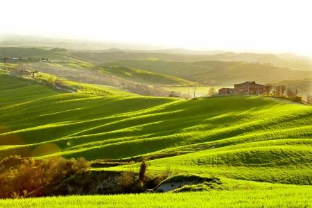 Countryside, San Quirico d`Orcia , Tuscany, Italy Stock Photo - 19841975