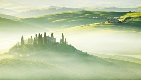 quirico: Countryside, San Quirico d´Orcia, Tuscany, Italy