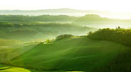 olive farm: Countryside, San Quirico d´Orcia, Tuscany, Italy Stock Photo