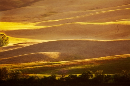 Scenic view of typical Tuscany landscape, Italy  photo