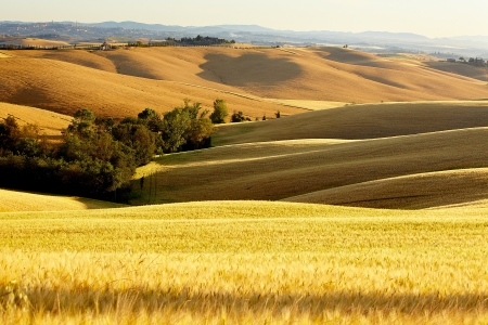 val d'orcia: Tuscany landscape with typical farm house on a hill in Val dOrcia, Italy  Stock Photo