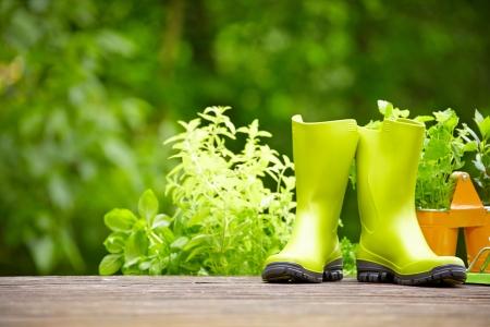 concept van het tuinieren en hobby