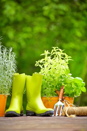 gardening tools: Rubber boots in wood terrace