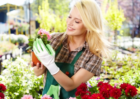 Florists woman working with flowers at a greenhouse Stock Photo - 20104690