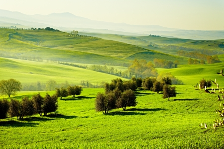Countryside, San Quirico´Orcia , Tuscany, Italy photo