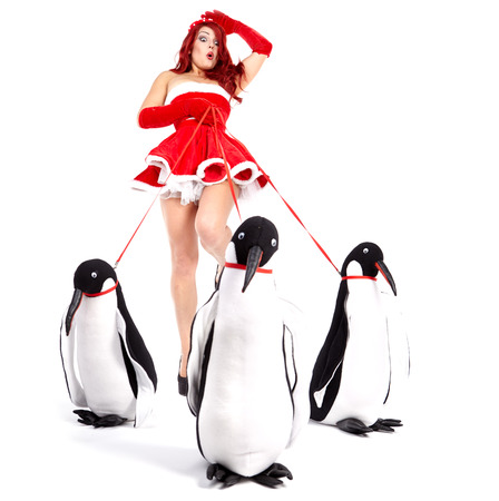 Pin-up fashion woman with penguin  photo