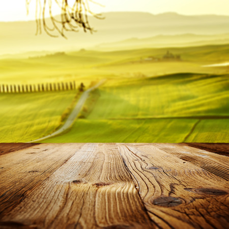 cornfield: wood textured backgrounds on the tuscany landscape