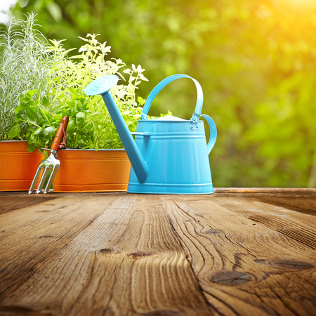 watering can: Outdoor gardening tools  on old wood table
