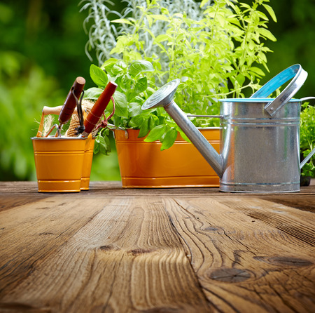 Outdoor gardening tools on old wood table photo