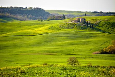 volterra: Beautiful green hills in Tuscany, Italy.  Stock Photo