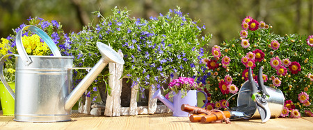 garden tool: Outdoor gardening tools and flowers on old wood table