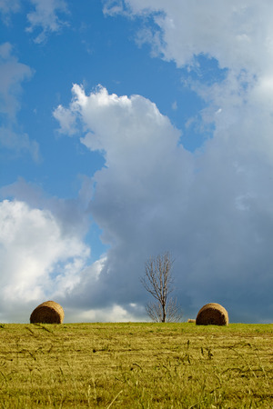 Hay bales on the field after harvest, Tuscany, Italy photo