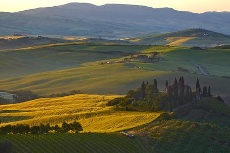 san quirico dorcia: Countryside, San Quirico d`Orcia , Tuscany, Italy