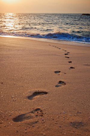 Footprints on the beach sand.Traces on the beach. Footsteps on the beach by the sea in summer  photo