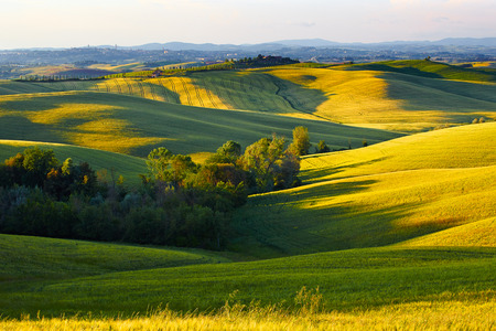 Tuscany Hills and Countryside in SIenna region, Italy photo