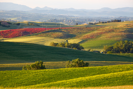 homestead: Countryside, San Quirico d Orcia , Tuscany, Italy