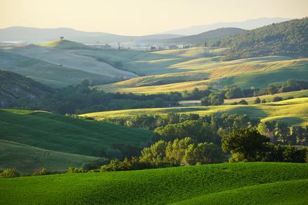 quirico: Countryside, San Quirico d Orcia , Tuscany, Italy
