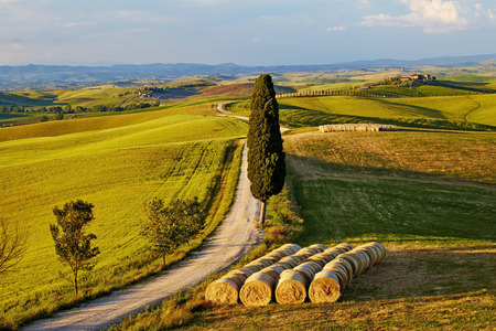 Beautiful Italy Tuscan landscape  photo