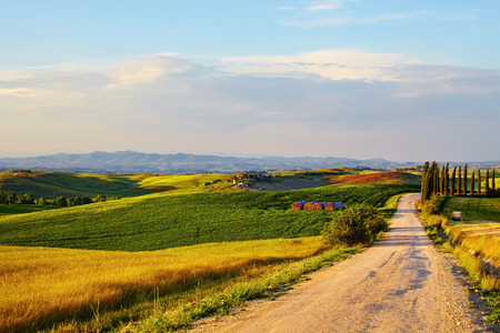 toscana: Beautiful Italy Tuscan landscape  Stock Photo