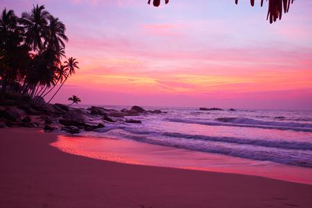 playas tropicales: Puesta de sol en la playa  Foto de archivo