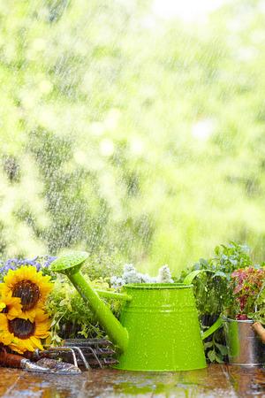 Outdoor gardening tools and flowers  Zdjęcie Seryjne