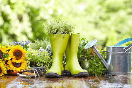 Rubber boots with watering can in wood terrace  Stock Photo