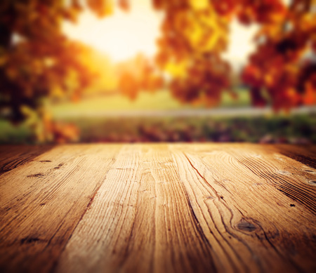 background cover: autumn background