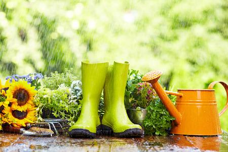 园林工具在雨中