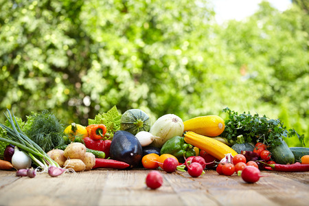 Fresh organic vegetables ane fruits on wood table  in the garden  Banque d'images