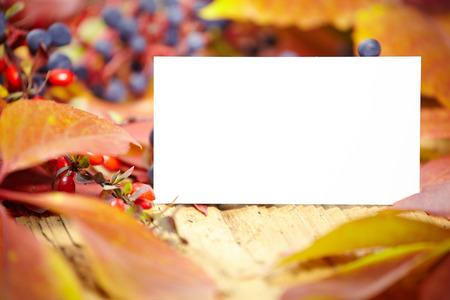 amongst: Blank place card amongst autumn leaves