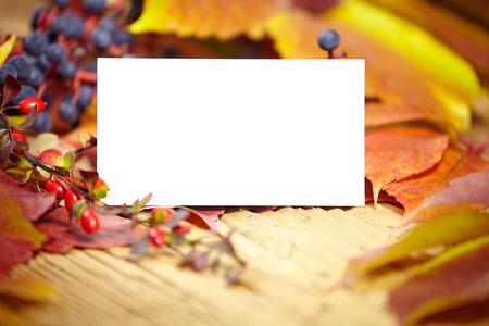 Blank place card amongst autumn leaves photo