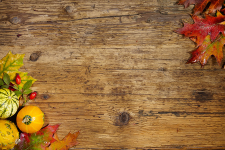 Thanksgiving Autumn Fall background with red, brown and yellow leaves and pumpkin photo