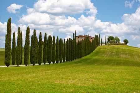 Landscape in Tuscany photo
